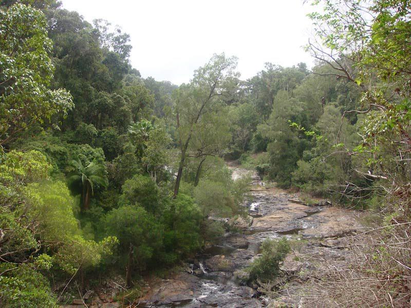 Eungella National Park Camping
