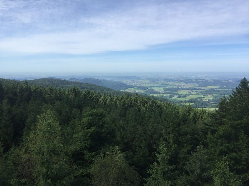 Waldwipfelweg Sankt Englmar - Ausblick