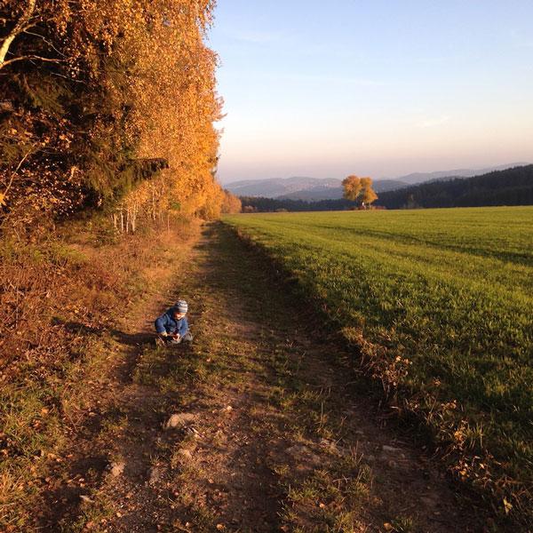 Stadt Regen / Bayerischer Wald - Natur bei der Burg Weissenstein
