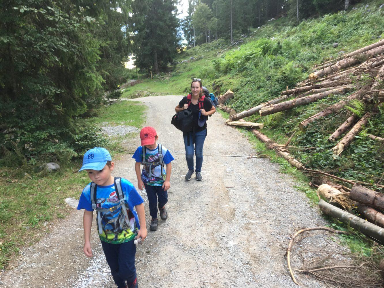steile Forstwege ohne sichtbares Ziel treffen sehr selten auf Begeisterung