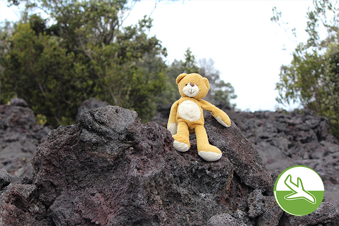 Hawai'i Volcanoes National Park mit Kindern - Bär auf Reisen