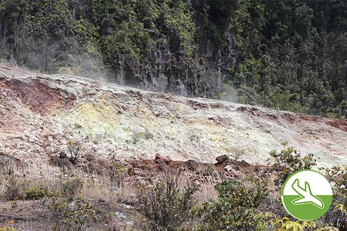 Hawai'i Volcanoes National Park - Steaming Vents