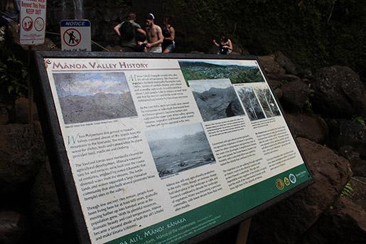 Manoa Falls Oahu Familienwanderung