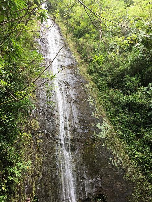 Und das sind sie, die Moana Falls auf Oahu. Nicht unglaublich spektakulär. Aber der Weg ist ja das Ziel.